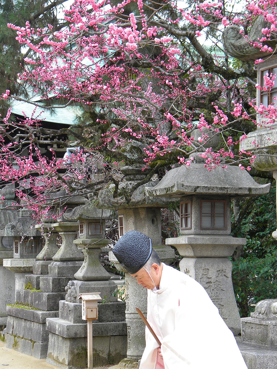 Praying monk @ Nara